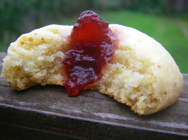 Bitten cranberry cookie