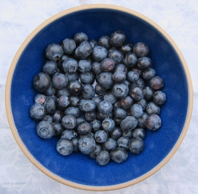 Blueberry Lavender cake (11)