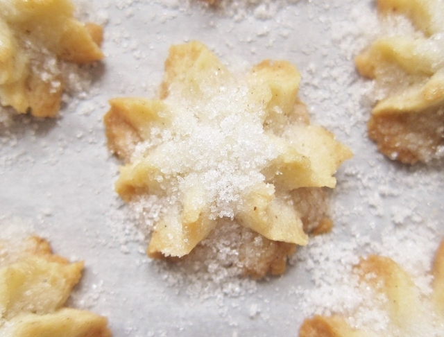 Salted spritz cookies (9)