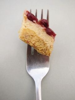 Pomegranate Pumpkin Cheesecake (1)