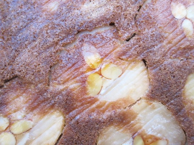 apple-almond-sherry-cake-29